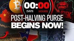 BEWARE! Halving Hype Will FADE! PURGE Begins Now!