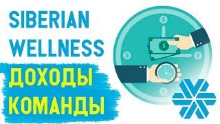 Siberian Wellness УРОКИ. Отчет в Сибирском здоровье доходы моей команды. Сетевой маркеинг и МЛМ