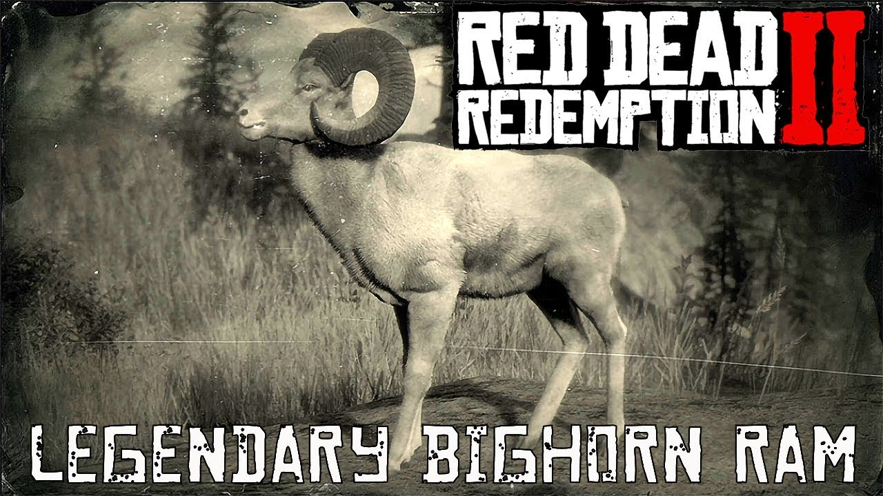 Red Dead Redemption 2 Legendary Animals Bighorn