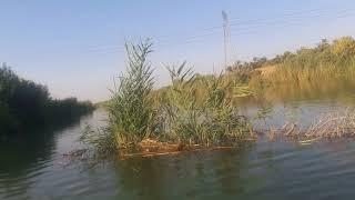شاهد ارتفاع ميأه نهر ديالى غير مسبوق من قبل 2018/٨/٣