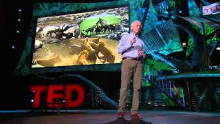 Environmental TEDtalk - Allan Savory: How to reverse climate change by greening the world