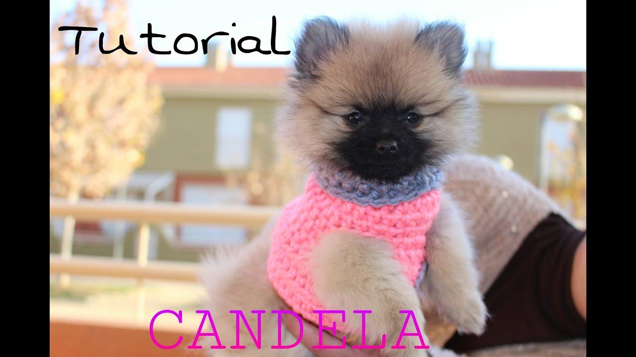 Cómo hacer un Sweater / Chaleco para perritos 1/2 - YouTube