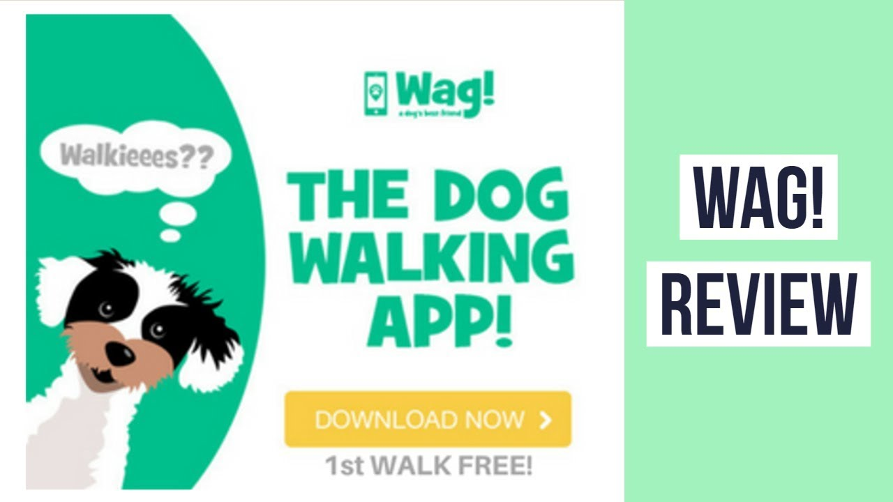 Wag Dog Walking Review ► Dog Walking App Wag! ◄ On Demand Dog Walking  Sitting Boarding
