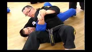 (119)Korean martial arts Gongkwon Yusul  open training (June, 2014)