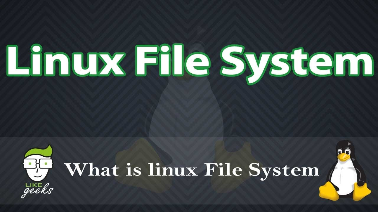 Linux File System And Why You Should know It