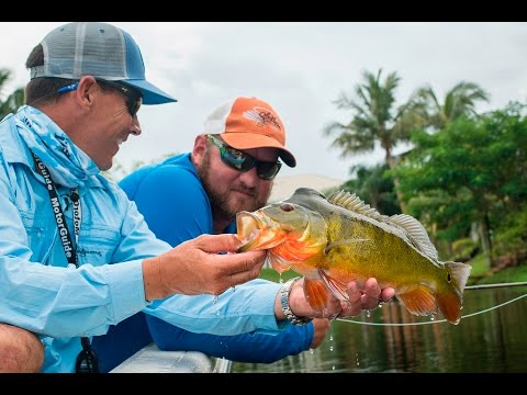 Reel Time Florida Sportsman - Peacock Bass and Clown Knife Fish - Season 5, Episode 4 - RTFS