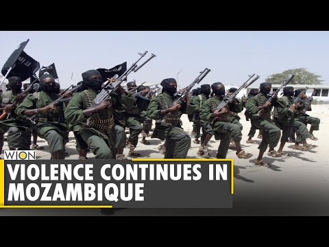 Mozambique: Palma escapees arrive in Pemba, recount violence | Latest World News | English News