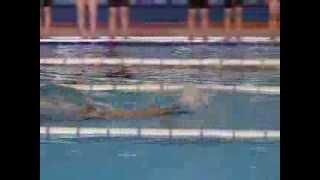 ダイナミックできれいな泳ぎで感動しました。