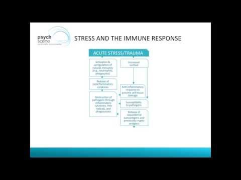 Stress, Immune System and The Brain- Autoimmunity and Psychiatry
