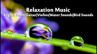 Relaxation Music: Vol. 2 - English Horn Version, Deep Sleep Music, Water Sounds, Bird Sounds