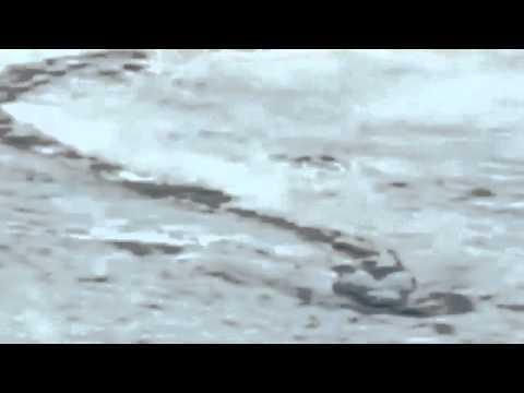 quai vat khong lo Iceland