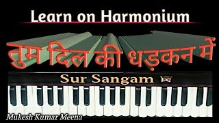 Tum Dil Ki Dhadkan Mein Rehte Ho II Sur Sangam II How To Sing And Play