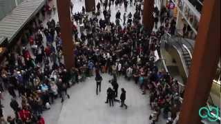Harlem Shake Eindhoven - 'Freeze' Version
