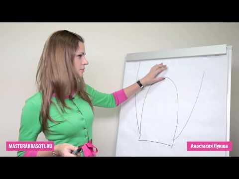 Masterakrasoti.ru — Анатомия и физиология ногтя (4/15)