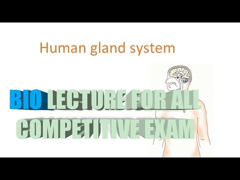 human gland system bio lecture for all competitive exam
