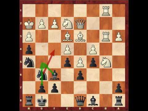 Shakhriyar Mamedyarov - Ben Finegold, 2017 PRO Chess League, Round 7