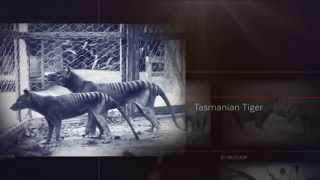 Thongam Birachandra unaba part 1[Manipuri Extinct Meitei Thanglon]