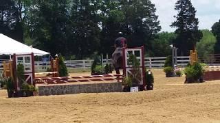 Lucchese Moriah Farm jumpers 5-30-2015
