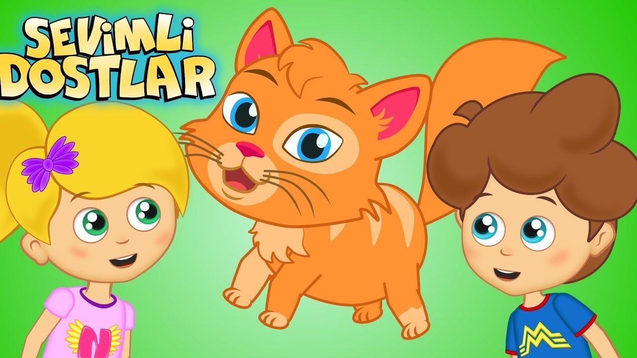 Kedi Miyav Dedi ve Sevimli Dostlar ile 45 Dakika Çocuk Şarkıları | Kids Songs and Nursery Rhymes