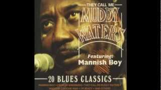 muddy waters-Train fare home blues