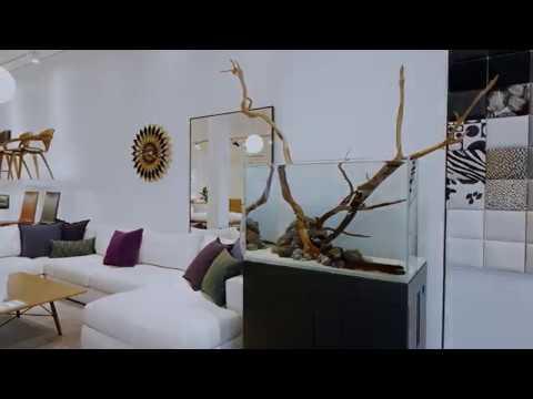Aquarium Design Group + Design Within Reach Houston Studio