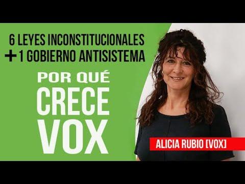 Por qué CRECE TANTO VOX 🚀. 6 leyes inconstitucionales y un 💥 Gobierno antisistema.