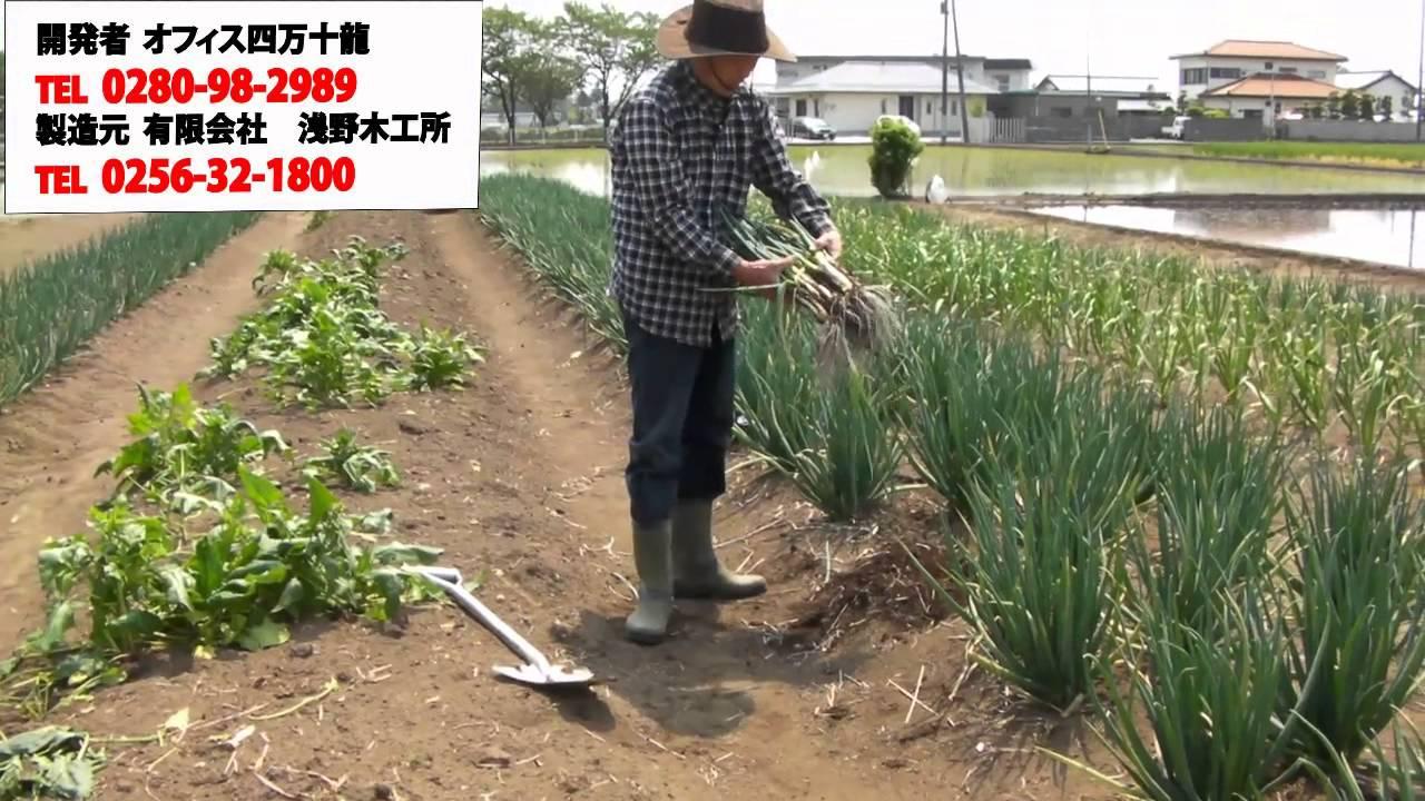 所 浅野 木工