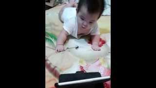 2014/11/02 小雞嗶嗶舞 嬰兒動感搖擺舞
