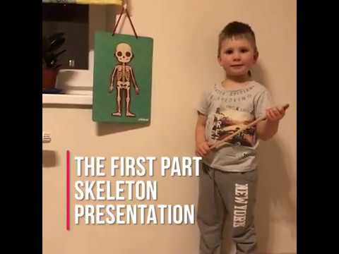 Skeleton Project