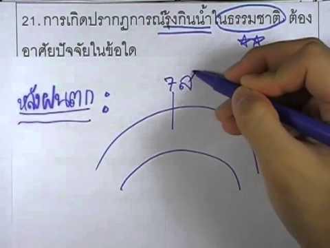 ข้อสอบO-NET ป.6 ปี2552 : วิทย์ ข้อ21