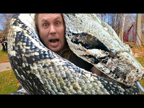 FOUND A 50 FOOT SNAKE!! LARGEST IN THE WORLD!! | BRIAN BARCZYK