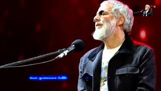 Cat Stevens - sad lisa   feb 2015