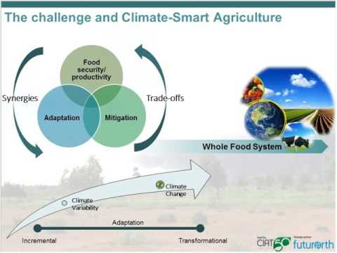 Reducing Climate Risks in Latin American Agricultural Sector: A Tool to Prioritize CSA