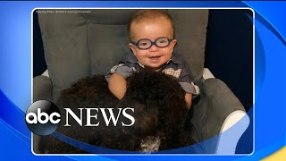 Adorable 2-year-old with spina bifida inspires millions