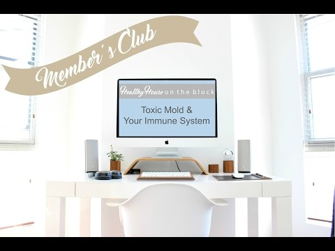 mold and immune system