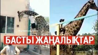 Басты жаңалықтар. 29.07.2019 күнгі шығарылым / Новости Казахстана