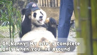 Panda: Oh, Nanny! My Life's Complete Only When You're Around | iPanda