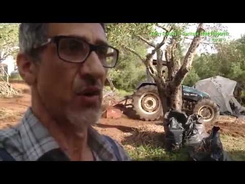 Kerry Cameraworks SE07 Full Permaculture Corfu