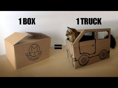 Transform a Box into a Fun Cat Truck