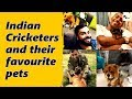 Which Indian cricketer has the cutest pet dog?