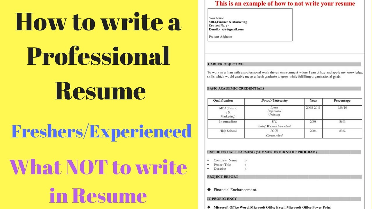 What Not To Write In A Resume How To Write A Perfect Resume Tips For Freshers Experienced What Not To Write In Resume