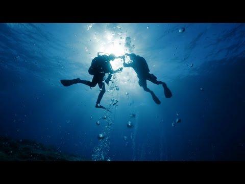 BIOACID - Exploring Ocean Change