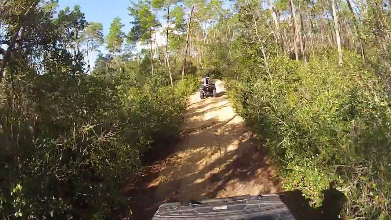 Ocala National Forest Centennial Trail Ride Youtube