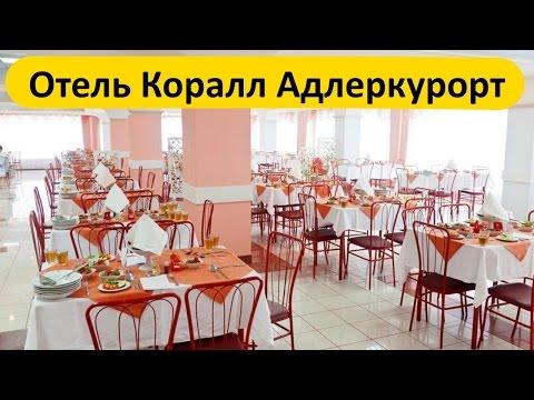 Адлер, Сочи, отзыв об отеле Коралл Адлеркурорт - номер, питание, море!!!
