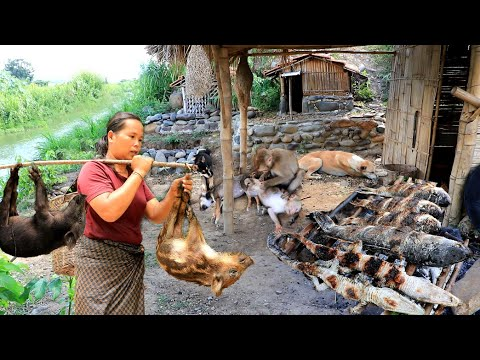 Survival In The Rainforest - Found Two Wild Boar & Cook Crocodile With Fish - Eating Delicious HD