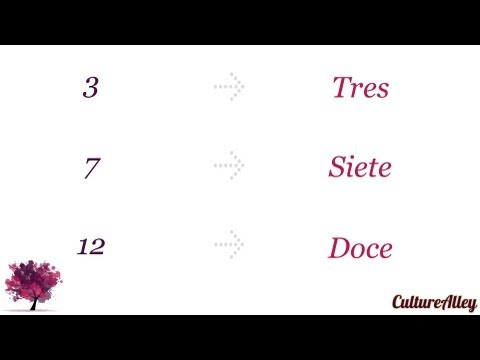 Basic Spanish | Lesson 16 | Numbers in Spanish!