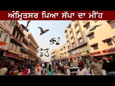 Amritsar ਦੀ ਰੋਂਗਟੇ