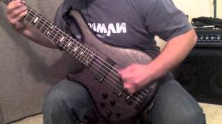 Soilwork - Aardvark Trail (bass cover) Blakhart Guitars