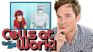Real DOCTOR reacts to CELLS AT WORK! Anime review