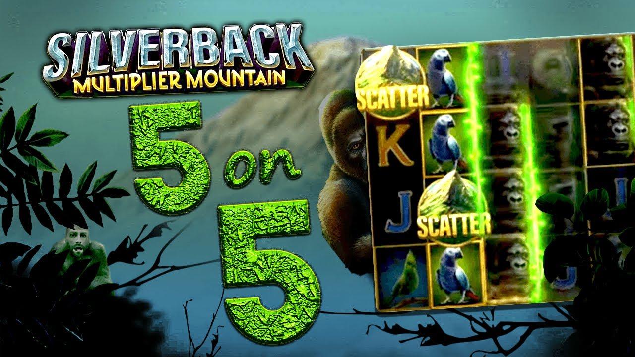 Silverback Multiplier Mountain 5 na 5